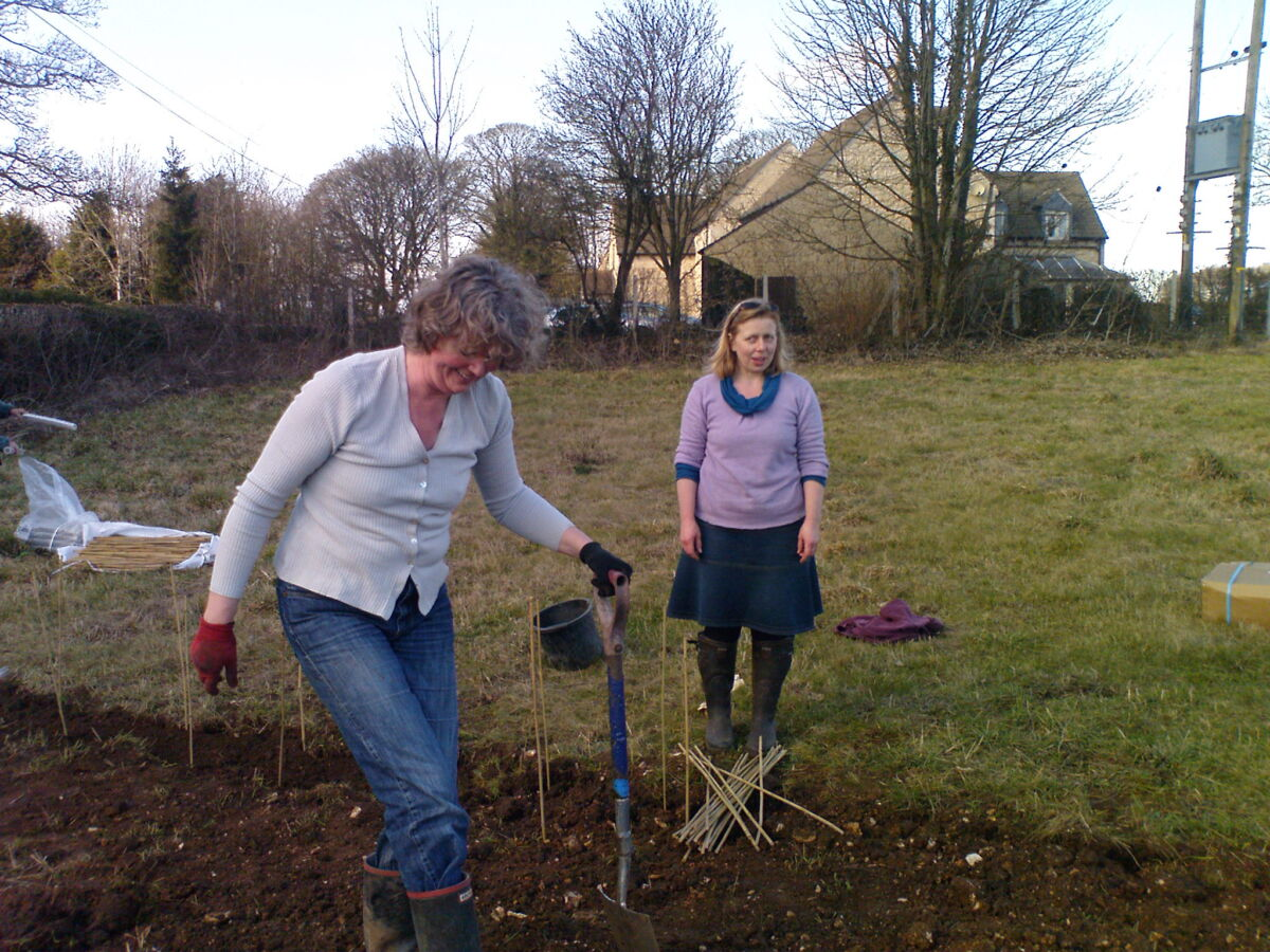 Lyn Hemming and Juliet Matthews laying out trees