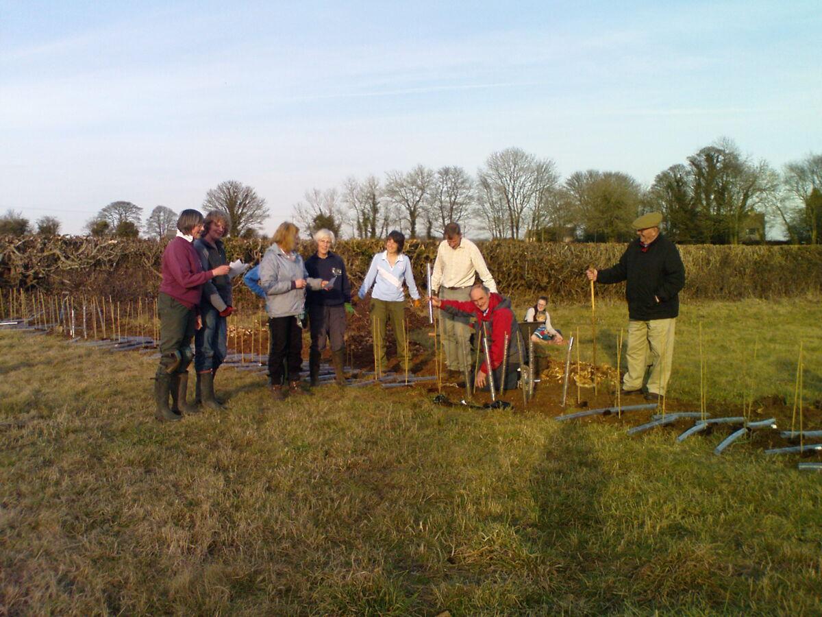 Planting the Jubilee Queen's Oak