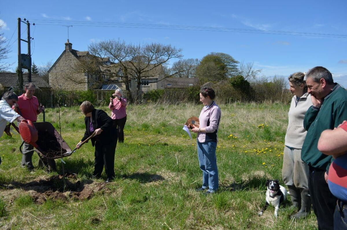 Ann Jones planting the memorial tree